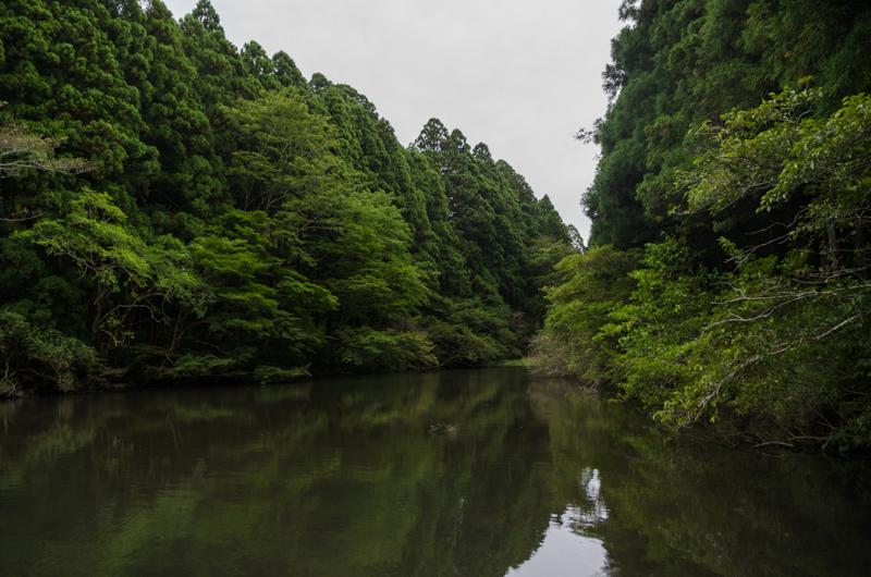 Garden, Hakone