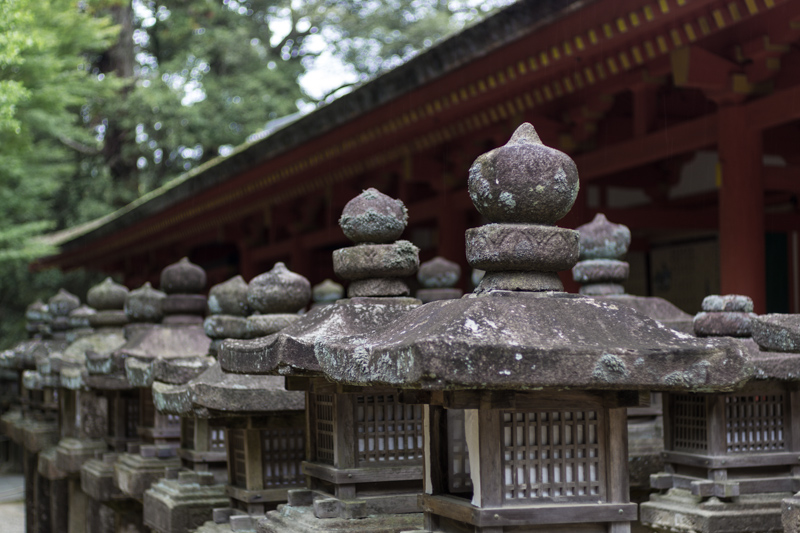 Little shrine, Nara