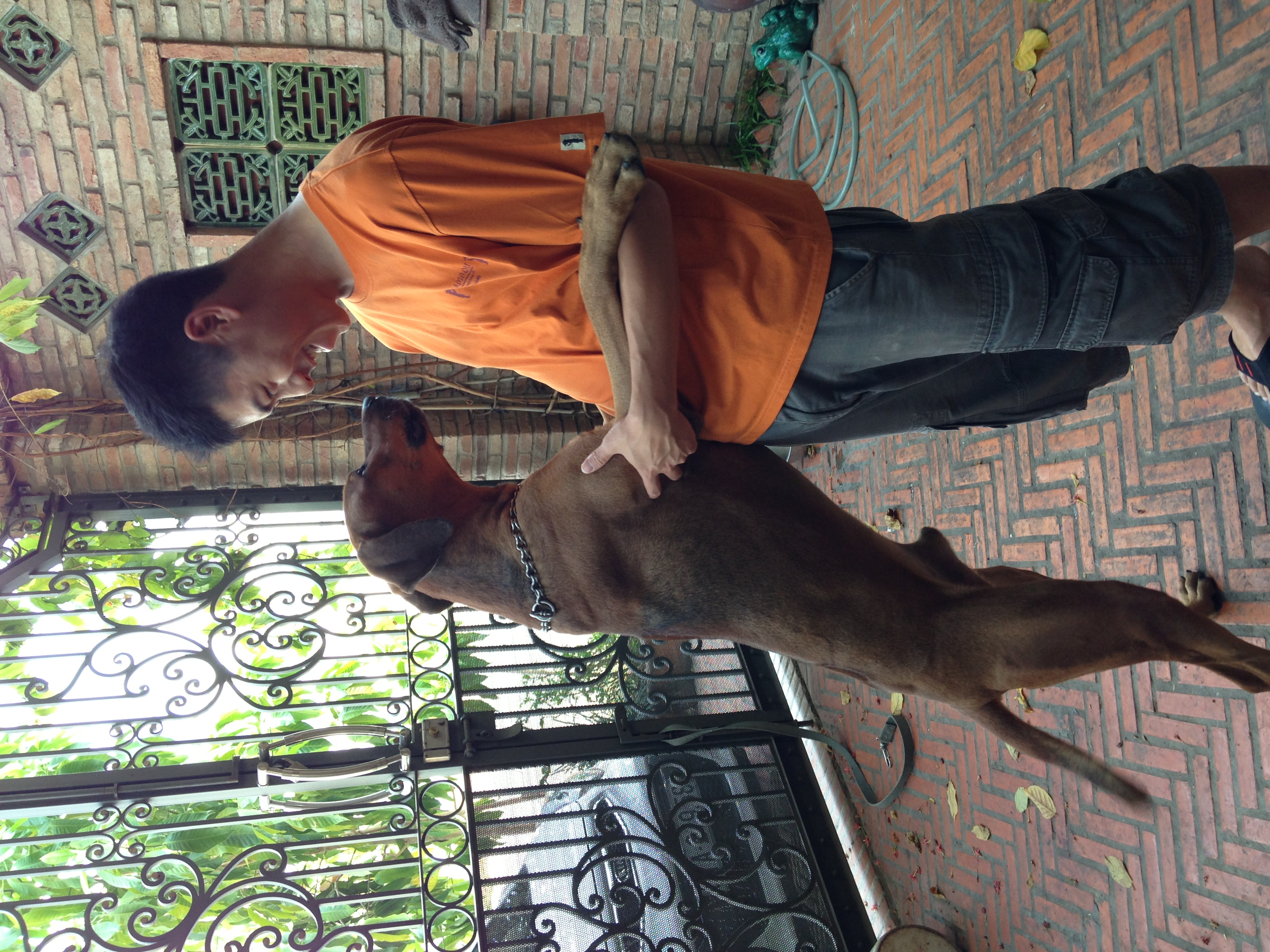 Bo, the Rhodesian Ridgeback, and me