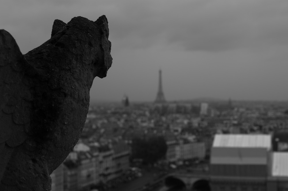Eiffel Tower from the towers of Notre Dame