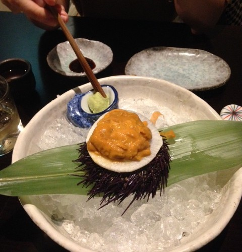 Fresh Tasmanian Sea Urchin