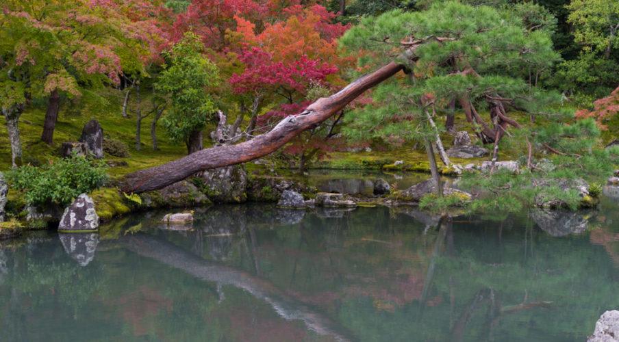 Arashiyama: Tenryuji, mirror pond