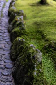 Ginkaku-ji: Moss rocks