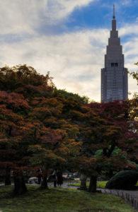 Shinjuku Gyoen: NTT Docomo Building Koyo