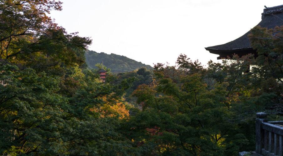 Kiyomizu Dera, still green